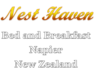 Great value Napier Bed and Breakfast accommodation