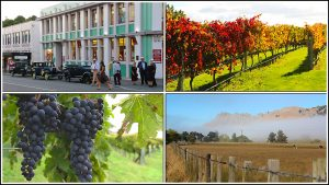 Enjoy touring Hawkes Bay Wine Country with Hawkes Bay Scenic Tours